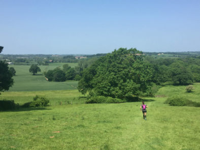 Pip descending to Bures Mill